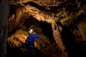 Cueva de los Órganos